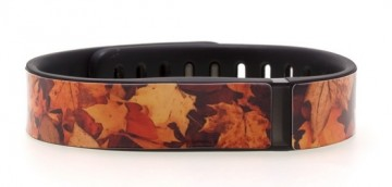 Fall Leaves Fitbit Flex Skins