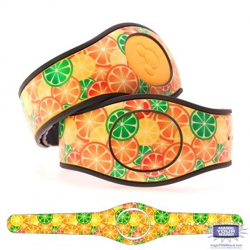 Citrus Fruit MagicBand 2 Skin